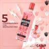 5 recetas de tragos con ginebra Beefeater Pink